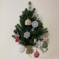 Merry Christmas ! - Bloom のんびり日記