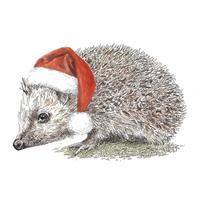 クリスマス 2020 サンタ帽のハリネズミたち - ブルーベルの森-ブログ-英国のハンドメイド陶器と雑貨の通販