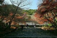 京都 二尊院 - 写真巡礼「日本の風景」
