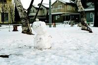 雪だるまと白飛びのしないレンズ - 照片画廊
