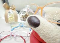 シンプルで丈夫なメガネ♪♪ - メガネのノハラ フォレオ大津一里山店 staffblog@nohara