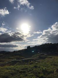 収穫とは何か???スピリチュアルはお金じゃない - 奈良 京都 松江。 国際文化観光都市  松江市議会議員 貴谷麻以  きたにまい
