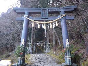 熊笹採取に・・高住神社のお手伝い -
