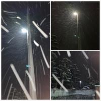 昨夜の雪景色サンタは?今朝のアルプス劇場・・ - きいろいポケット