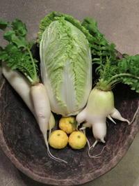 故郷の便り、野菜の便り…。 - 京都の骨董&ギャラリー「幾一里のブログ」