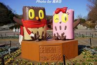 武蔵丘陵森林公園へ行ってきました♪ - 四季彩の部屋Ⅱ