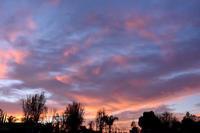 sunset* - Avenue No.8 Vol.2