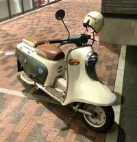 兎(rabbit scooter)の散歩 - 笑わせるなよ泣けるじゃないか2