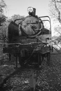 公園の蒸気機関車 - YAJIS OFFICE BLOG
