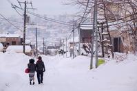雪の情景 - Part.12 - - 夢幻泡影