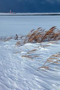 雪の情景 - Part.13 - - 夢幻泡影