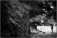 門前 - コバチャンのBLOG