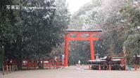 下鴨神社に行く2020年12月 - 写楽彩