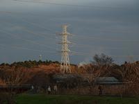 鉄塔 - ネコと裏山日記