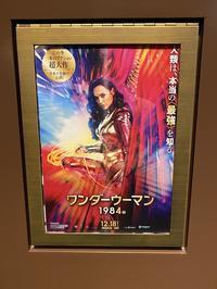 Wonder Woman 1984 - 5W - www.fivew.jp