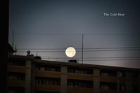 大晦日の朝に見た月 - 気の向くままに…