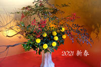 A HAPPY NEW YEAR 2021 - Blue Planet Cafe  青い地球を散歩する