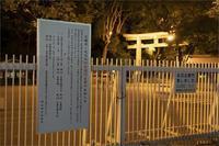 1337         366/366    12月31日(木)7127 - from our Diary. MASH  「写真は楽しく!」