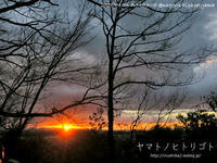 冬休みのアルバム「初日の出」 - yamatoのひとりごと