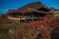 2020京都紅葉~改修工事の終わった清水寺 - 鏡花水月