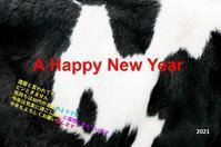 A HAPPY NEW YEAR - 定年(60)ですが、何か?