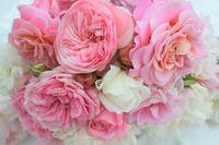 2021年(令和3年)明けましておめでとうございます。 - バラとハーブのある暮らし Salon de Roses