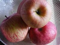 りんごチョコレート - AppleRose