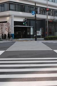 密な信号 / X-T3 + KIPON IBERIT 35mm f/2.4 - minamiazabu de 散歩