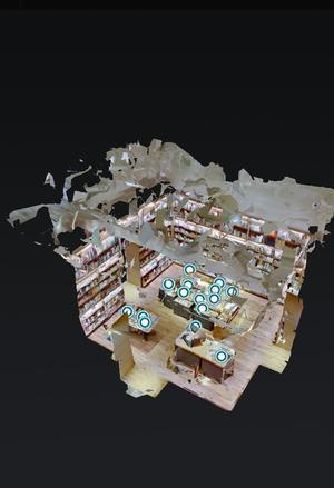 VR exhibition at DAIKANYAMA TSUTAYA BOOKS - 『一日一畫』 日本画家池上紘子