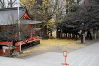 暮れの花園神社 - M8とR-D1写真日記