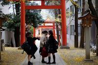 暮れの花園神社 (2) - M8とR-D1写真日記