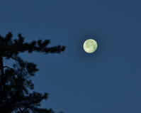 今年の初撮りはお月様から - 星の小父さまフォトつづり