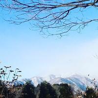 秀寿司  ★★★ - 下町グルメ探訪