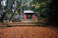 2020湖東の紅葉遠征・其の三(百済寺) - デジタルな鍛冶屋の写真歩記