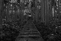 雪景色@賀茂神社 - デジタルな鍛冶屋の写真歩記