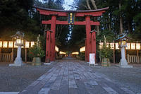 弥彦神社2 - くろちゃんの写真
