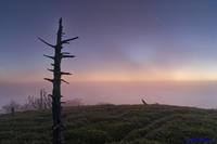 明けの大台ケ原 - katsuのヘタッピ風景