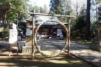 茅の輪くぐり - 里山の四季