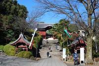 広々とした敷地に重要文化財、そして人慣れしたネコやスズメが時折顔を出すゆったりとした空気の流れる大本山護国寺 - Tokyo File