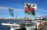 大漁旗はためく九十九里・片貝漁港 - 東金、折々の風景