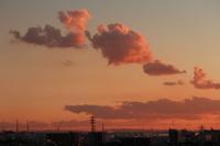夕陽に染まるわた雲とうね雲 - 日々の風景