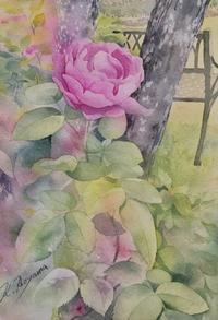 散策路で出会った薔薇 - 青山一樹 スケッチ画のひととき