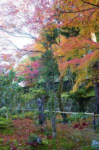 2010年の京都旅 - バリ島大好き