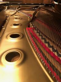 謹賀新年2021〜音楽の仕事は不要不急か - ピアニスト&ピアノ講師 村田智佳子のブログ