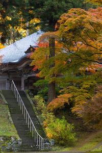 2020紅葉きらめく丹波文保寺の秋 - 花景色-K.W.C. PhotoBlog