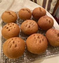パン作り初め - 種と仕掛け de パン作り      heizelpanヘイゼルパン bread & beyond