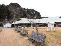 鳥たちの季節/フワフワ植物 - 千葉県いすみ環境と文化のさとセンター