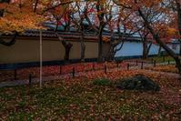 2020京都紅葉~秋の特別公開終了後の黄梅院 - 鏡花水月