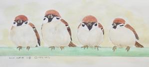 #ネイチャー・スケッチ  #Naturejournal  『雀』Passer montanus -