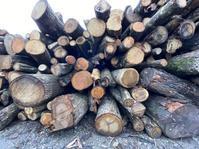 木づかい講座のお知らせ - 家具工房モク・木の家具ギャラリー 『工房だより』